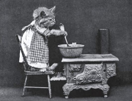 Винтажный котенок готовит еду фотоколлаж