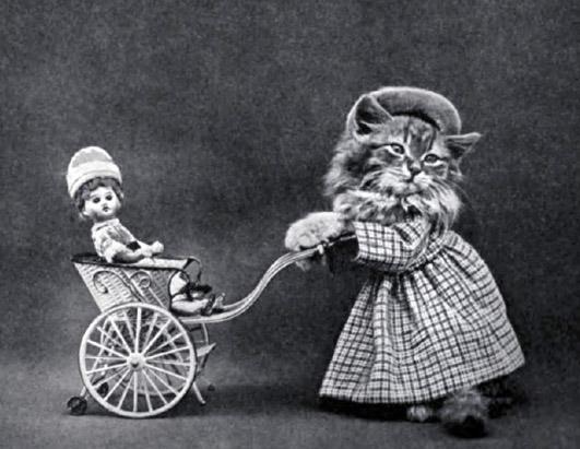 Винтажные коты коляска фотоколлаж