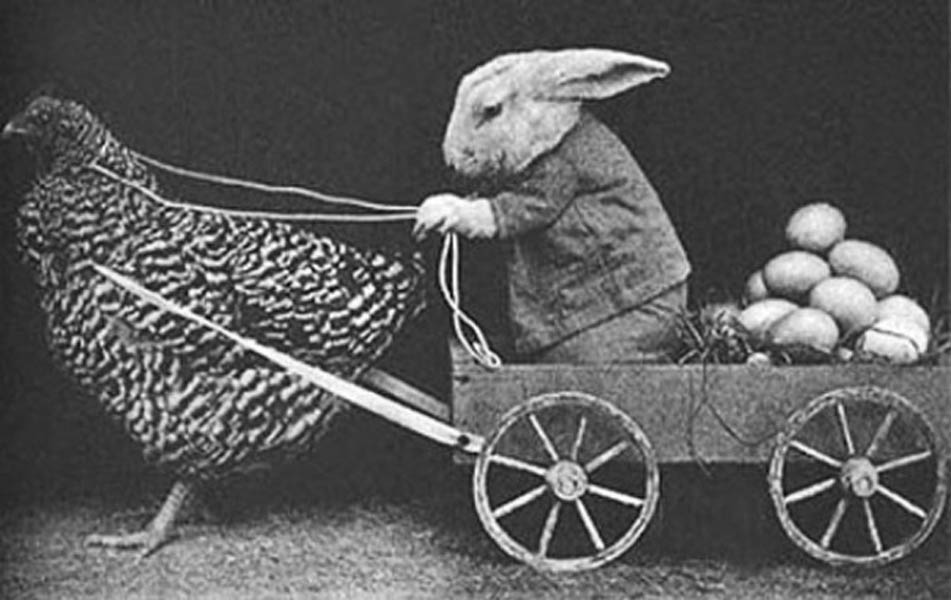 Винтажный кролик фотоколлаж