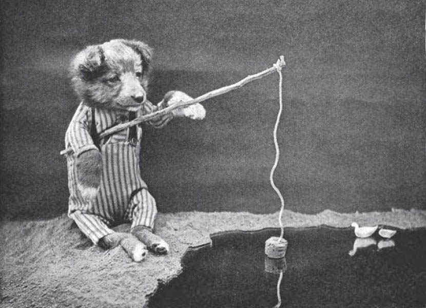 Винтажный щенок фотоколлаж