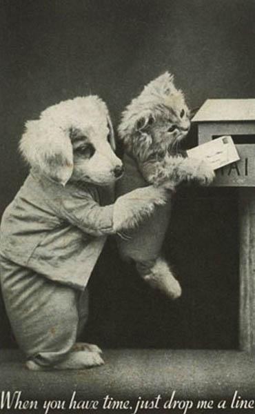 Винтажный щенок и котенок фотоколлаж