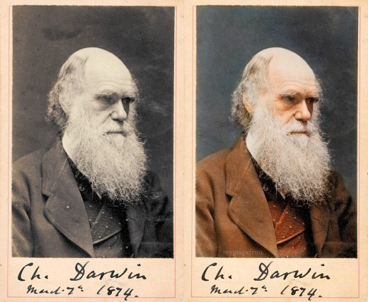 Charles-Darwin-520x435