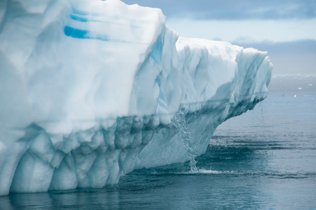 floating-icebergs-greenland-05