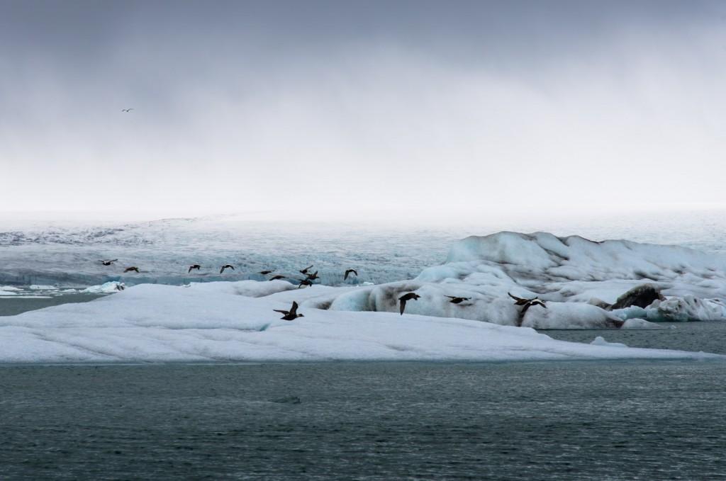 glacier-lagoon-iceland-01