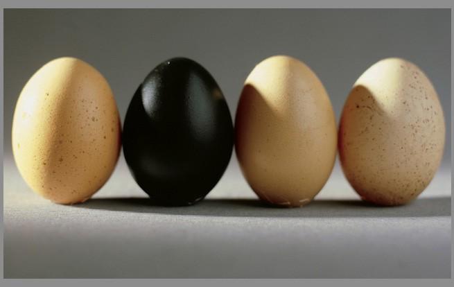 создание полупрозрачного яйца в фотошопе оригинал