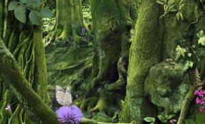 Рууд Ван Эмпл фотоколлаж ребенок бабочка