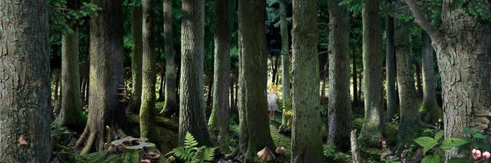 Рууд Ван Эмпл фотоколлаж ребенок в лесу