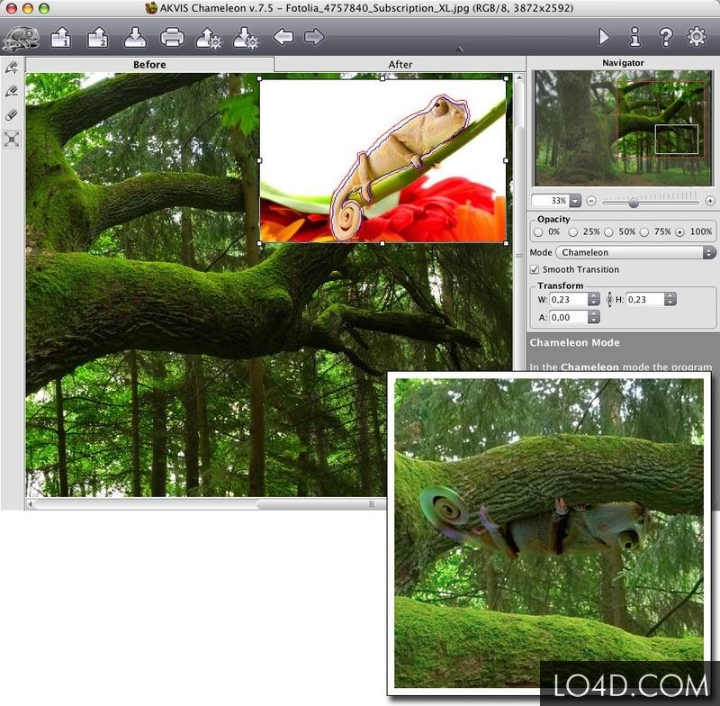 Программа фотоколлажа AKVIS Chameleon