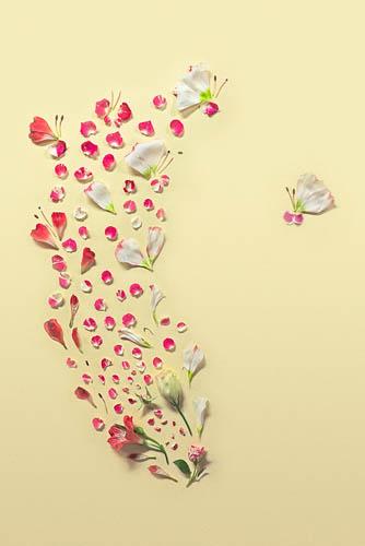 Цветочные картины из лепестков