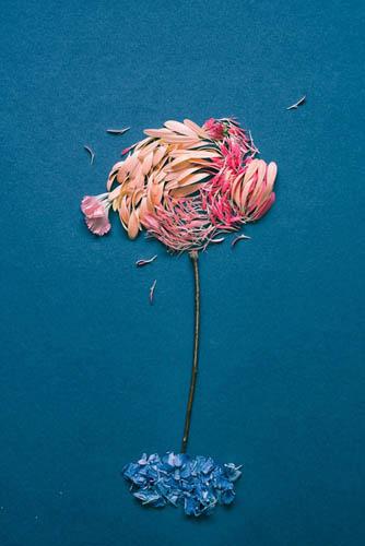 Цветочные картины из лепестков гербера